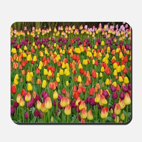 Colorful spring tulips garden Mousepad