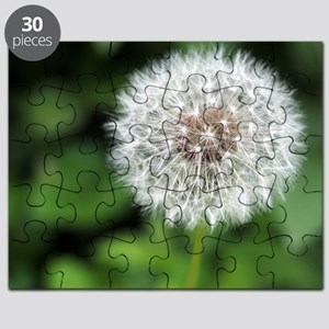 Dandelion Puff Puzzle