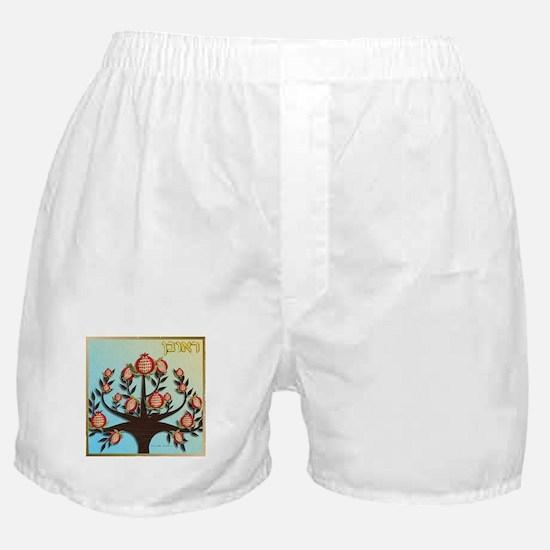 12 Tribes Israel Reuben Boxer Shorts