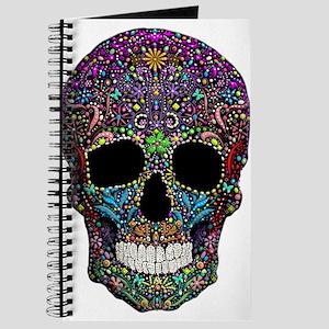Colorskull on Black Journal