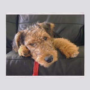 Sleepy Airedale Earnest Throw Blanket