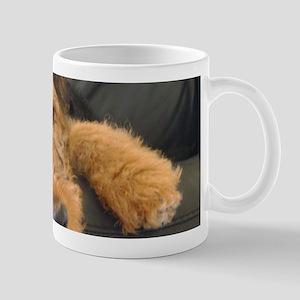 Sleepy Airedale Earnest Mugs