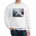 Creation of a Boston Ter Sweatshirt
