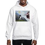 Creation of a Boston Ter Hooded Sweatshirt