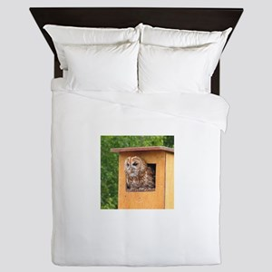Brown Owl Queen Duvet