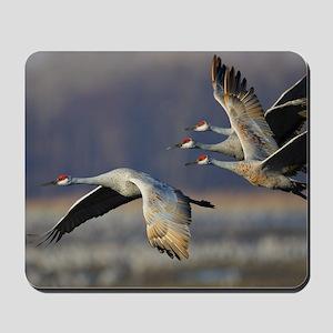 Cranes Mousepad