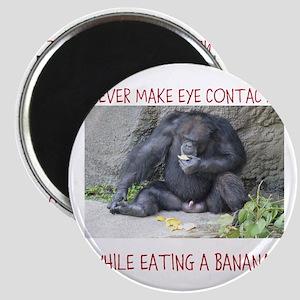 Monkey eating a banana Magnets