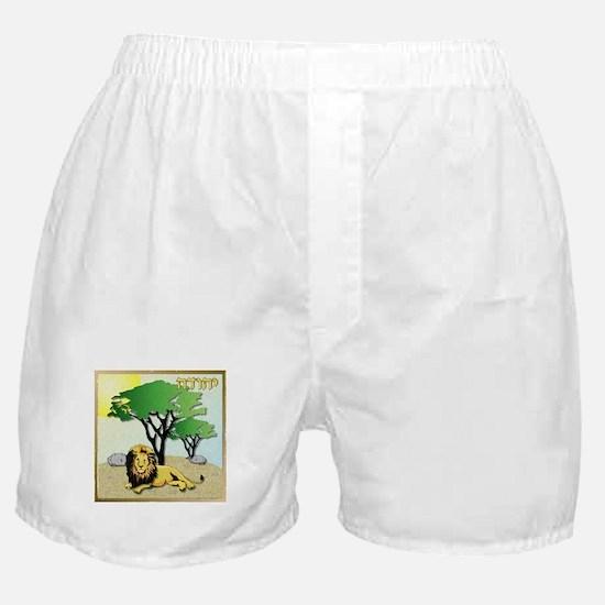 12 Tribes Israel Judah Boxer Shorts