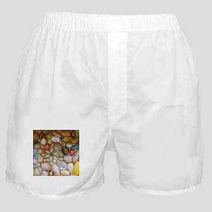 Colorful Seashells Boxer Shorts