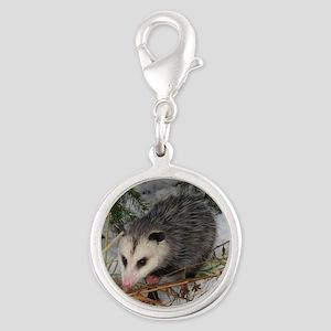 Baby Possum Charms