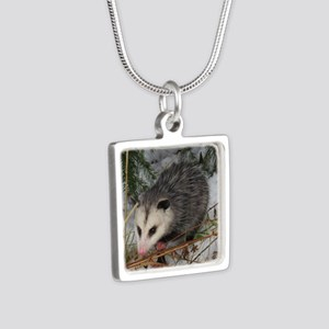 Baby Possum Necklaces