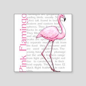 PinkFlamingo Sticker