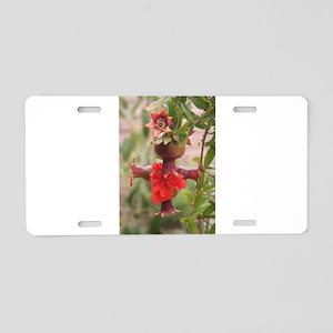 Pomegranate Cross Aluminum License Plate