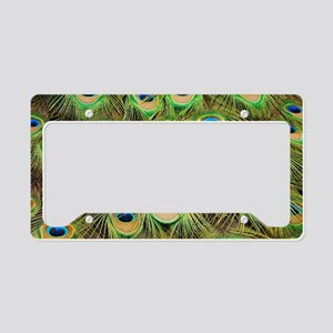 Colorful peacock tail feather License Plate Holder