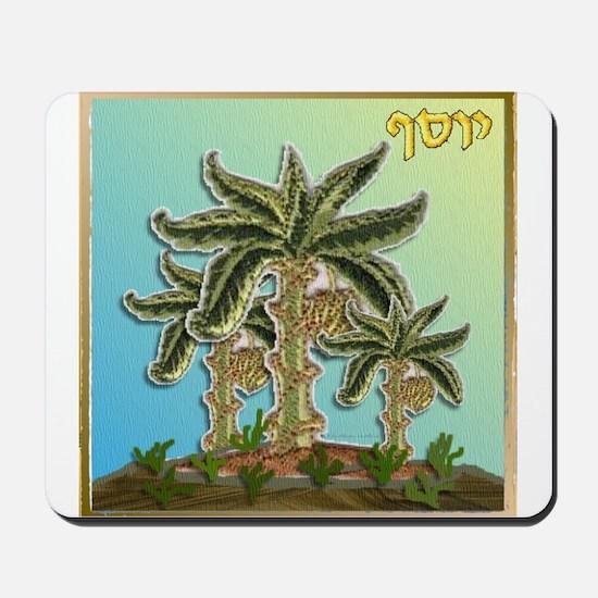 12 Tribes Israel Joseph Mousepad