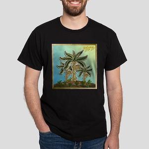 12 Tribes Israel Joseph T-Shirt