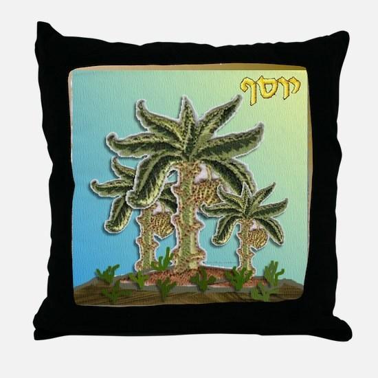 12 Tribes Israel Joseph Throw Pillow