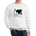 Have Fun in Agility Sweatshirt