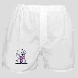 Maltese Girl In Pink Boxer Shorts
