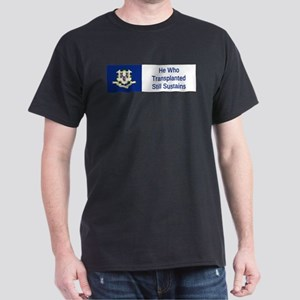 Connecticut Motto #1 T-Shirt