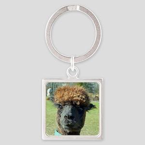 Black alpaca Square Keychain