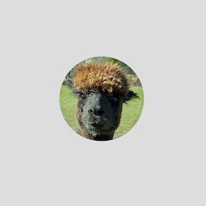 Black alpaca Mini Button