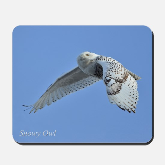 Snowy flying Mousepad
