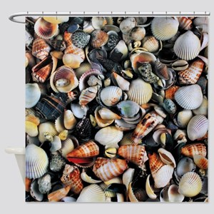 Seashells Shower Curtain