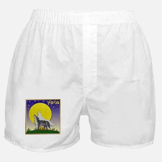 12 Tribes Israel Benjamin Boxer Shorts