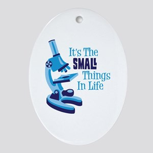 Its The SMALL Things In Life Ornament (Oval)