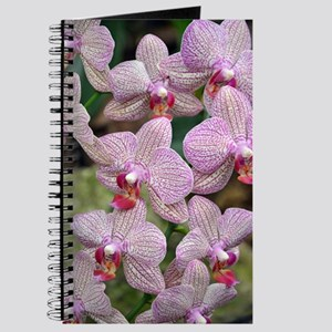White and purple orchids Journal