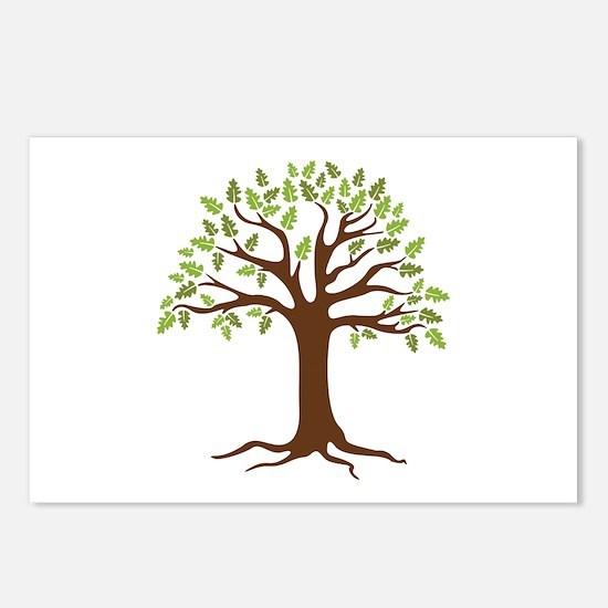 Oak Tree Postcards (Package of 8)
