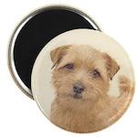 Norfolk Terrier Magnet
