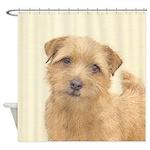 Norfolk Terrier Shower Curtain