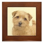 Norfolk Terrier Framed Tile