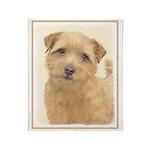 Norfolk Terrier Throw Blanket