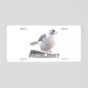 Problem!? Aluminum License Plate