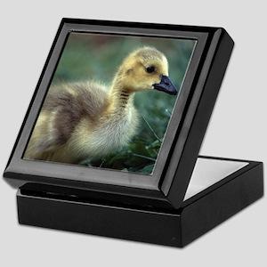 baby goose Keepsake Box