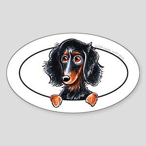 Longhaired Dachshund BT Peeking Sticker