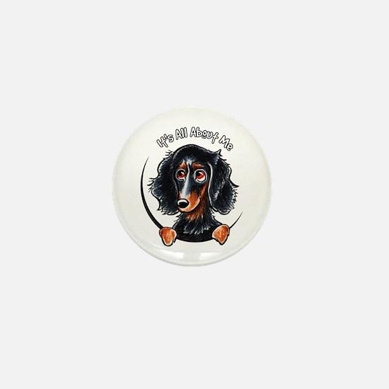 Dachshund Longhair B/T IAAM Mini Button