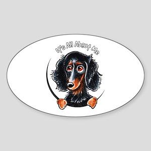 Dachshund Longhair B/T IAAM Sticker (Oval)
