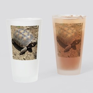 CALIFORNIA DESERT TORTOISE Drinking Glass