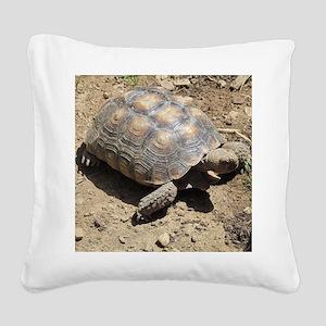 CALIFORNIA DESERT TORTOISE Square Canvas Pillow
