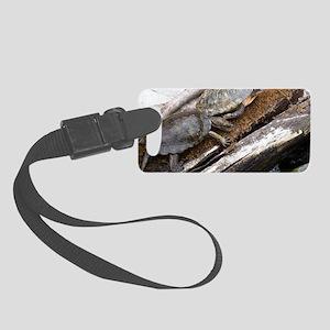 SULCATA TORTOISE Small Luggage Tag