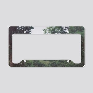 Mountain View in the Island o License Plate Holder