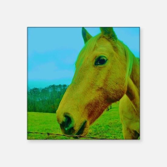 "Cream horse close up Square Sticker 3"" x 3"""