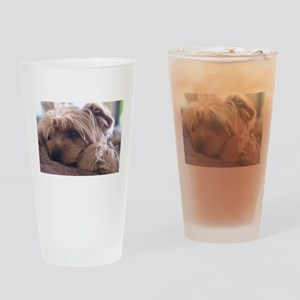 Cute Yorkie Drinking Glass