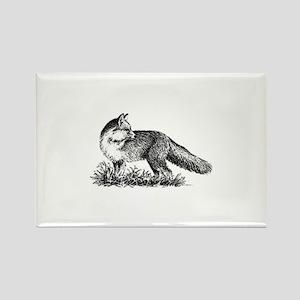 Red Fox (illustration) Magnets
