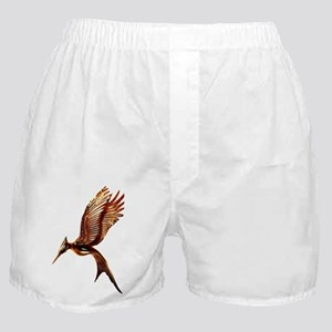 Catching Fire Boxer Shorts