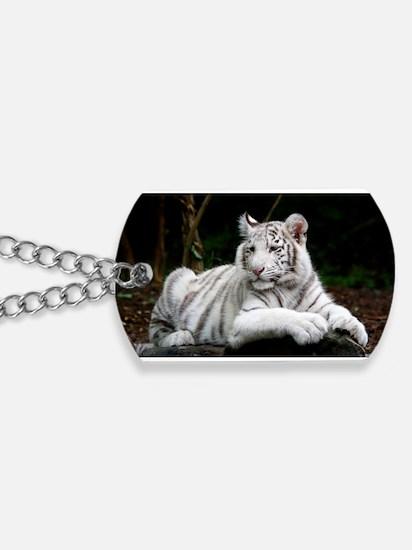 White Tiger Cub Dog Tags